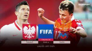 โปแลนด์กู้ฟอร์ม!